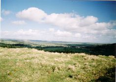WARDEN NORTHUMBERLAND SPRING - Google Search