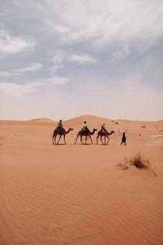 Image result for summer desert morocco wedding