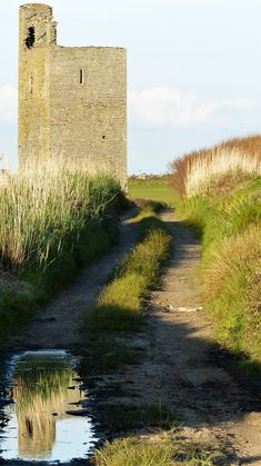Co. Clare: Tromora Castle. Irish Landscape, My Photos, Castle, Country Roads, Castles