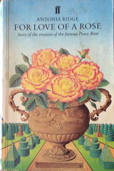 A story about the Peace Rose.