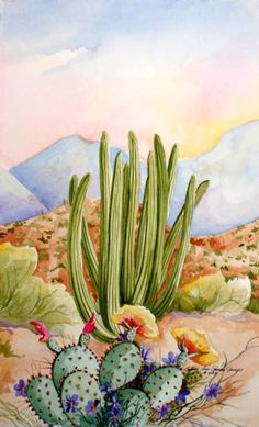 Organ Pipe Cactus Among Friends IV Watercolor painting on 300 lb paper - x This painting has three companions for a total of four pieces. Cactus Paintings, Southwestern Art, Flower Painting, Desert Landscape Painting, Watercolor Paintings, Painting, Desert Art, Southwest Painting, Original Watercolor Painting