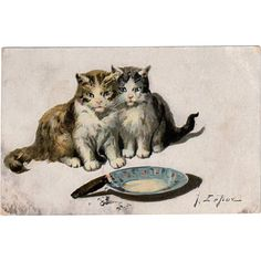 Old Postcard with Kittens- Jules LeRoy, 1910