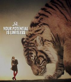 290 Likes, 2 Comments - Success Tiger Quotes, Lion Quotes, Inspirational Quotes About Success, Success Quotes, Business Motivation, Fitness Motivation Quotes, Ambition, Leadership, Jack Ma