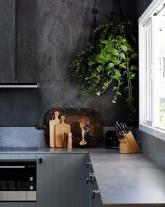 Industrial finishes paired with coastal inspired paneling is a unlikely match made in heaven for this Byron Bay gem. Oh, and, hanging plant goals anyone? Colour used is Haymes Gulf. Design by @thedesignory. Photography by @jessie_and_jones