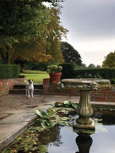 Jeremy Langmead's English country house. Photo Martyn Thompson for the WSJ mag Farmhouse Landscaping, Landscaping Ideas, Genius Loci, Outdoor Living, Outdoor Decor, Outdoor Rooms, Water Features In The Garden, Water Garden, Garden Ponds