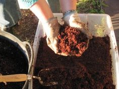Homemade potting soil. Oh where have you been my entire gardening life?