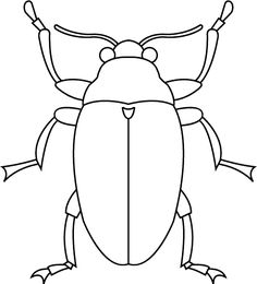 Desenhos para colorir - Desenhos para colorir insetos