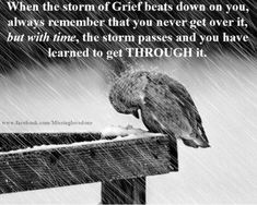 I have included some of the most touching and meaningful quotes dealing with the loss of a loved one and/or grief. I hope that some of these quotes can bring some of the readers healing. Loss Quotes, Quotes About Loss, Quotes About Grief, Quotes Quotes, Wife Quotes, Friend Quotes, Happy Quotes, Meaningful Quotes, Inspirational Quotes