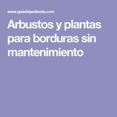 Arbustos y plantas para borduras sin mantenimiento Patio, Gardens, Perennials, Shrubs, Growing Up, Landscaping, Terrace