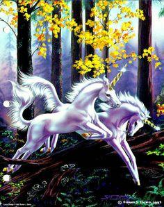 Most Beautiful Unicorn Art Unicorn And Fairies, Unicorn Fantasy, Unicorns And Mermaids, Unicorn Horse, Unicorn Art, Fantasy Art, Magical Creatures, Fantasy Creatures, Pegasus