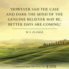 Better days are coming —Plumer