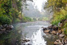 Nature, West Funnel Creek