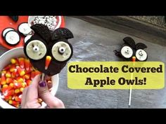 Chocolate Apple Owls | Pintober - #YouTube