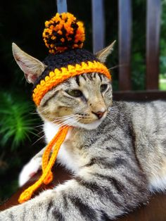 Cat Hat Costume - The Halloween Pom Pom Beanie for Cats and Small Dogs