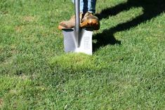 man pushing boot down on shovel removing weeds from lawn Lawn Care Schedule, Lawn Care Tips, Lawn Soil, Weeds In Lawn, Lawn And Garden, Garden Edging, Garden Trees, Herb Garden, Reseeding Lawn