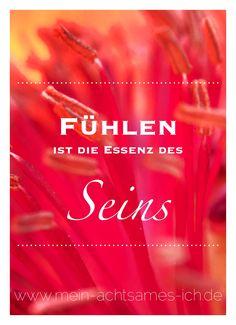 Fühlen ist die Essenz des Seins… www.mein-achtsames-ich.de