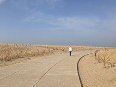 Katwijk-Coastal_Defence-OKRA-04 « Landscape Architecture Works | Landezine