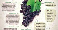 La uva negra ayuda en la prevención del envejecimiento prematuro, por su alta concentración de antioxidantes como el resveratrol. Además, tomar zum… | Pinteres…