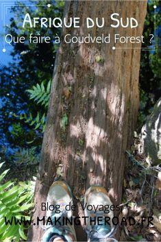 Découvrez quoi faire à Knysna en Afrique du Sud, randonnées et plages somptueuses. #afriquedusud #randonnée #plage Road Trip, Knysna, Voyage Europe, Destination Voyage, Blog Voyage, Travel Inspiration, Travel Destinations, Blogging, Happy