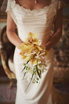golden cymbidium and white phalanopsis orchids