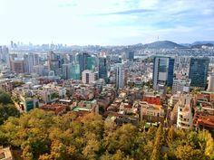 Widok z wzgórza Namsan #seoul #jesień