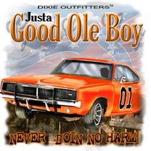 Just a good ole boy. Pontiac Gto, Chevrolet Camaro, Chevy, Dukes Of Hazard, Southern Pride, Southern Quotes, Mustang Cars, Diesel Trucks, 4x4 Trucks