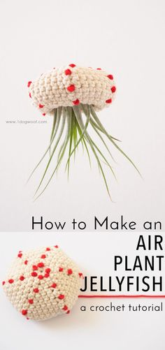 Plant Jellyfish Tutorial How to Make a Crochet Air Plant Jellyfish. Makes for an adorable bit of decor! Free pattern tutorial at How to Make a Crochet Air Plant Jellyfish. Makes for an adorable bit of decor! Free pattern tutorial at Free Form Crochet, Crochet Geek, Crochet Patterns Amigurumi, Love Crochet, Easy Crochet, Crochet Flowers, Tutorial Crochet, Crochet Summer, Crochet Home Decor