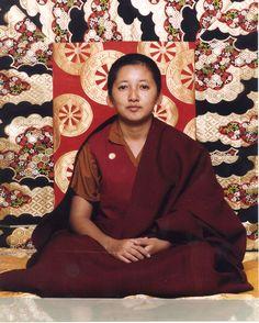Maravillosa Jetsun Khandro Rinpoche, maravillosa su forma de enseñar, su palabra diamantina, clara, preciosa y afilada