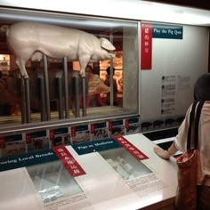 Play the pig quiz Science Museum, Hong Kong, Social Media, Play, Instagram, Social Networks, Social Media Tips