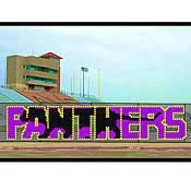 Our Panthers Put In Cup Set allows you to create a super spirited chain-link fence design in your school colors. The Panthers Chain Link Fence Cup Set will get your students and community pumped up for the big game! Pep Rally, Chain Link Fence, Fence Art, Outdoor School, Student Council, Football Field, Military Discounts, Fence Design, School Colors