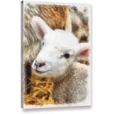 ArtWall Kevin Calkins Lamb in Spring Gallery-Wrapped Canvas, Size: 16 x 24, Brown