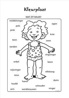 Wat zit waar I Love School, Back To School, Learn Dutch, Human Body, Homeschool, Classroom, Teaching, Kids, Science