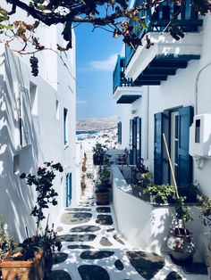 Island Hopping In Greece with – Spiritual Gangster Exploring Mykonos, Folegandros, Milos and Santorini with Greek Islands To Visit, Best Greek Islands, Greece Islands, Island Hopping Greece, Beautiful Places To Travel, Romantic Travel, Romantic Places, Travel Aesthetic, Beach Aesthetic