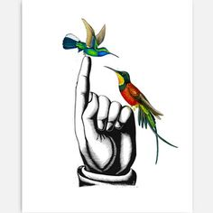 Hummingbirds Print 11x14 now featured on Fab.