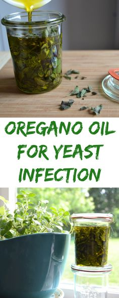 Oregano Oil for Yeast Infection #yeastinfection #candida