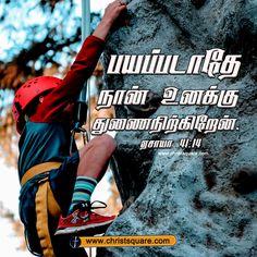 Bible Verses Quotes Inspirational, Hd Quotes, Prayer Quotes, Bible Quotes, Bible Vasanam In Tamil, Tamil Bible Words, Christian Song Lyrics, Christian Verses, Bible Verse Wallpaper