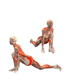#ASHVA SANCHALASANA Low lunge, left leg forward   YOGA.com