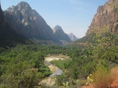 Park Family Insurance > Blog Zion National Park from the Valley Floor