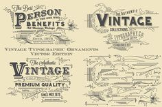 Vintage Typographic Ornaments by G7 on @creativemarket