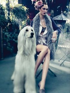 Model Arizona Muse and a white Afghan hound.
