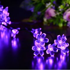 Dephen Solar Flower String Lights 22ft 50 LED Fairy Peach Blossom Christmas lights for Outdoor Garden Lawn Patio Wedding Party Home Decoration(Purple) ^^ Don't get left behind, see this great product : Christmas decor