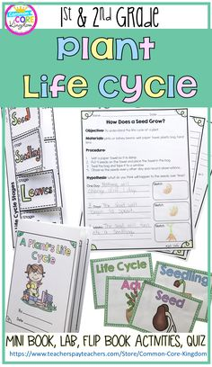 Are you looking for activities and lessons to teach your first and second graders about the life cycle of a plant? This packet includes a mini book, foldable activities, vocabulary cards, labs, and a quiz.