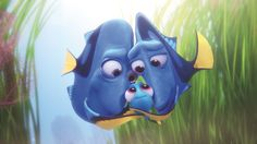 Here are 9 things you didn't know about Finding Dory. Here's one that's not in the article: Baby Dory is too cute for words.