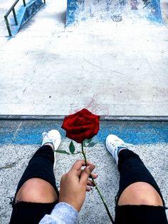 Uma das três únicas imagens adicionadas ao Pinterest que foram fotografadas por Isalcela: I Bloom just for you