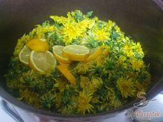 Pampeliškový med s přídavkem třtinového cukru Seaweed Salad, Palak Paneer, Diet Tips, Avocado Toast, Preserves, Herbalism, Food And Drink, Herbs, Smoothie