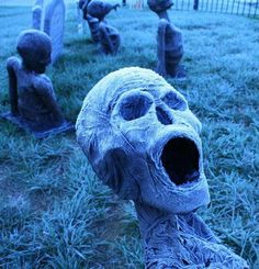 Halloween decorations. Buy the heads at Dollar Tree and stick in the graveyard this year!