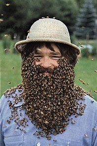 beard of bees - insane.  Bees are great but they freak me out a little.
