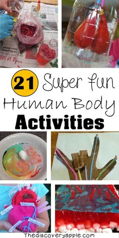 21 Super Fun Human Body Activities and Experiments for Kids - The Discovery Apple