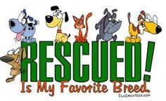 Website dedicated to rescued animals of all types, breeds and species.