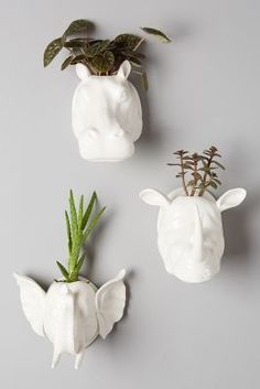 Anthropologie Sahel Wall Planter #anthroregistry #anthropologie